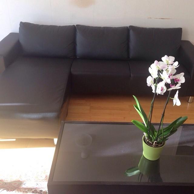 Min mamma säljer en nästan helt ny skin soffa för 2000kr och måste sälja den så fort de bara går! Hojta om någon vill köpa!